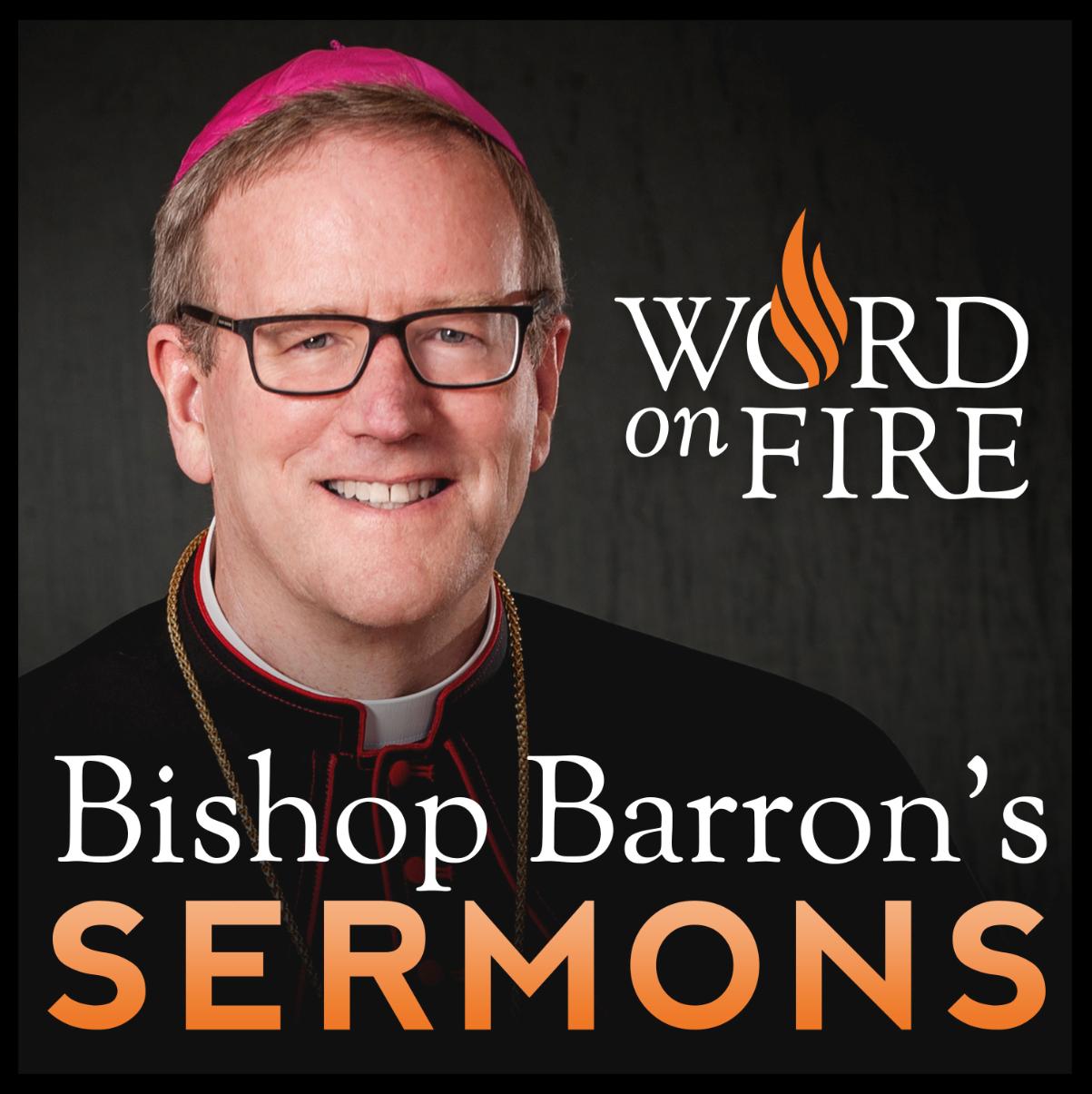 <![CDATA[Bishop Robert Barron's Sermons]]>