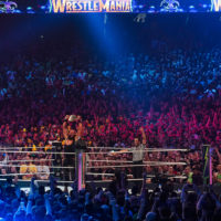 "WWE's ""Survivor Series"": Virtually Entertaining and Rather Tragic"